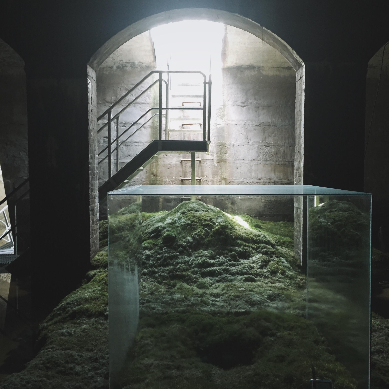 Cisternerne-EmmaHåkansson